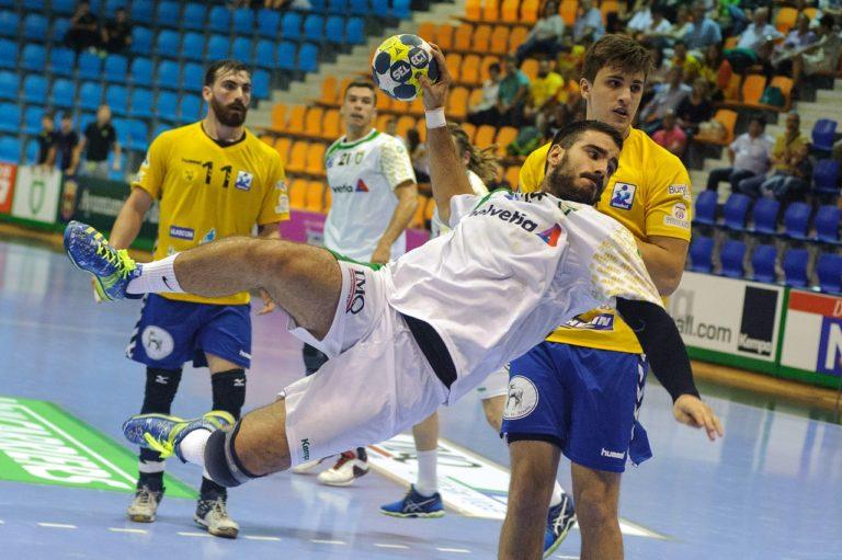 sports, handball, party